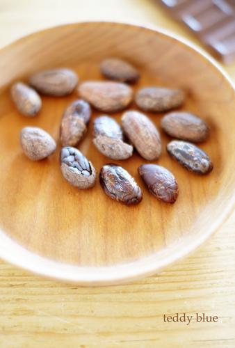 Dear Cocoa beans  ディア ココアビーンズ_e0253364_19563293.jpg