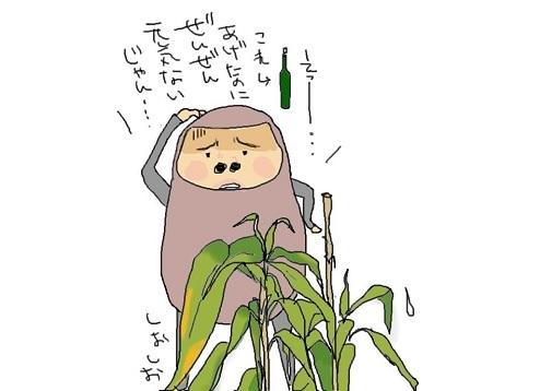 人にも植物にも、自然なものが一番いい_f0096569_07282088.jpg