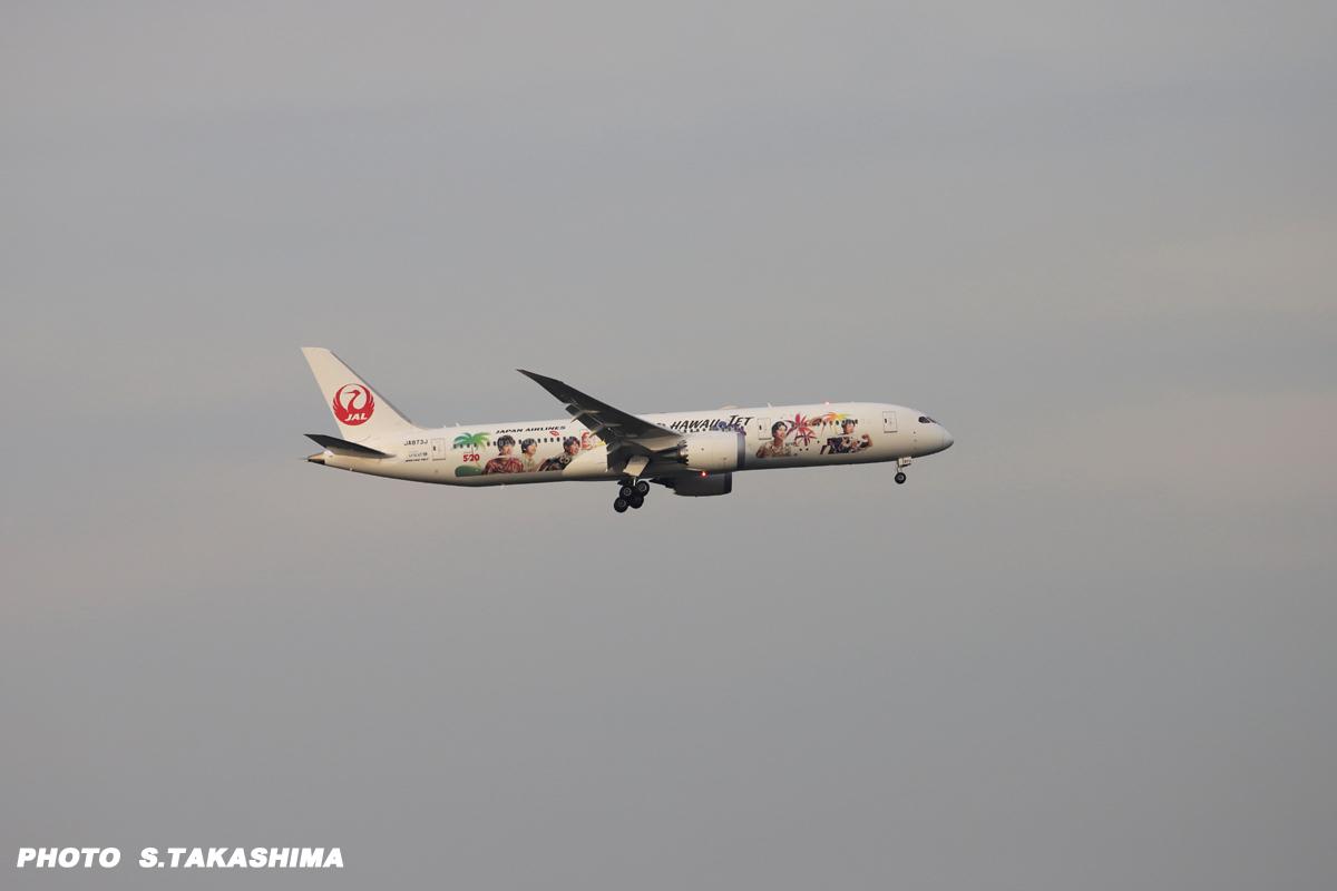 JALの ARASHI HAWAII JET_b0368378_20210677.jpg