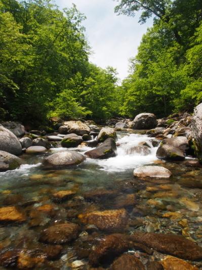 熱風吹き抜ける溪。_c0197578_23314442.jpg