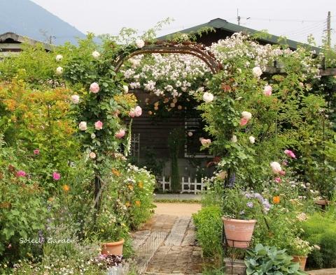 ◆素敵なお庭・・多可町のOG_e0154682_21591952.jpg