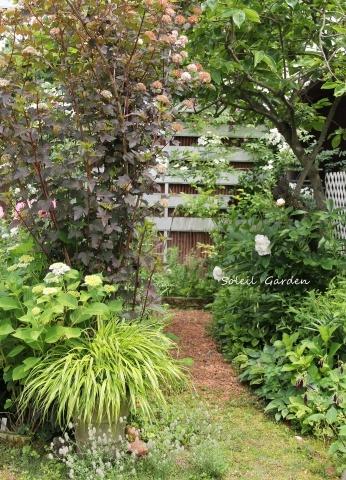 ◆素敵なお庭・・多可町のOG_e0154682_22011632.jpg