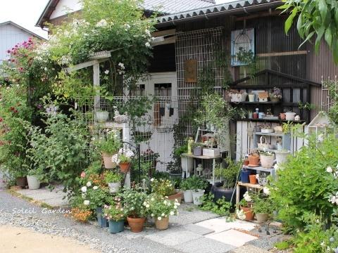 ◆素敵なお庭・・多可町のOG_e0154682_22021056.jpg