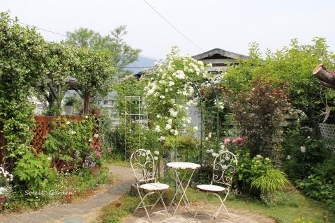 ◆素敵なお庭・・多可町のOG_e0154682_22051379.jpg