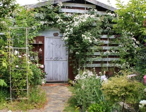 ◆素敵なお庭・・多可町のOG_e0154682_22052955.jpg