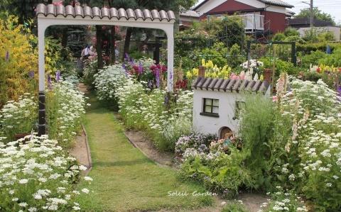 ◆素敵なお庭・・多可町のOG_e0154682_22145702.jpg