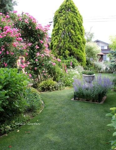 ◆素敵なお庭・・多可町のOG_e0154682_23405690.jpg