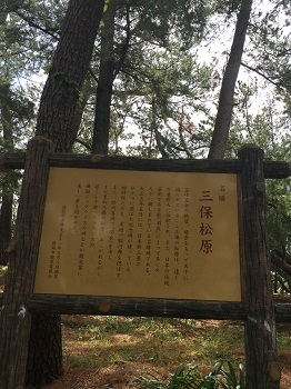 ゴールデンウィーク 富士山の旅~☆ 2日目_e0123286_18280568.jpg