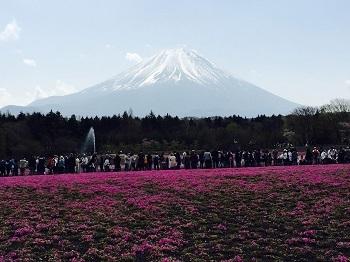 ゴールデンウィーク 富士山の旅~☆ 最終日_e0123286_19005294.jpg
