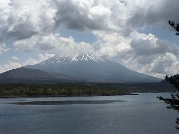 ゴールデンウィーク 富士山の旅~☆ 最終日_e0123286_19024204.jpg