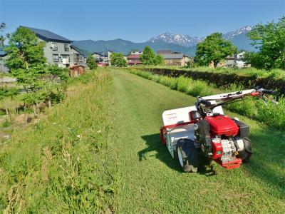 シーズン初の草刈り作業を行いました!_c0336902_19462249.jpg