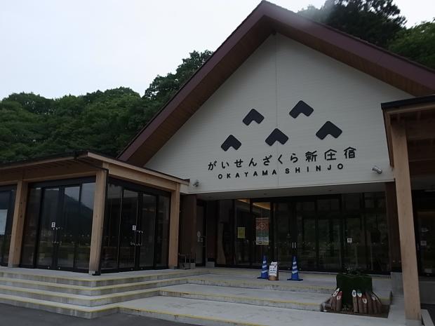 岡山県新庄村森林セラピー ゆりかごの森_f0197703_12485428.jpg