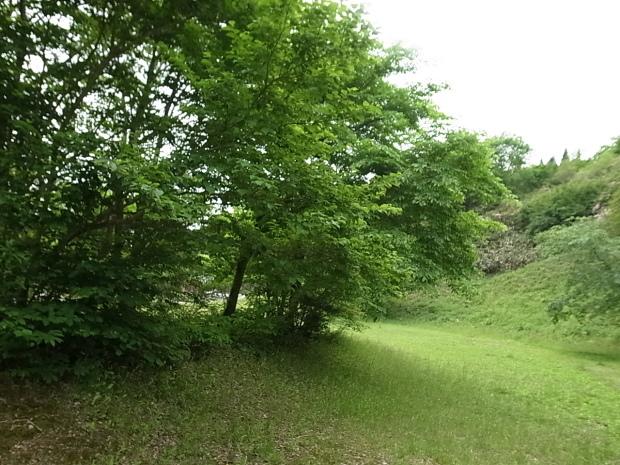 岡山県新庄村森林セラピー ゆりかごの森_f0197703_15424820.jpg