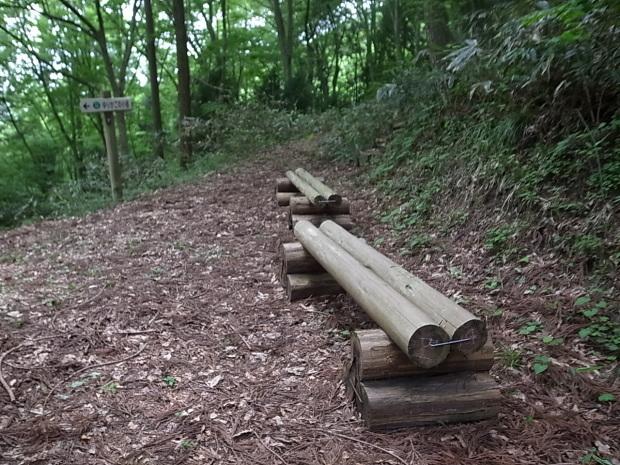 岡山県新庄村森林セラピー ゆりかごの森_f0197703_16300749.jpg