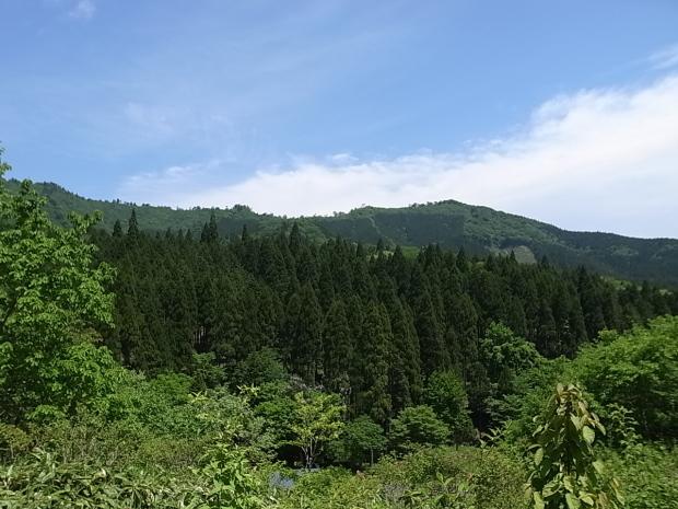 岡山県新庄村森林セラピー ゆりかごの森_f0197703_16443034.jpg