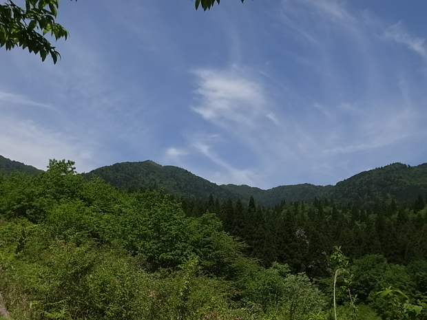 岡山県新庄村森林セラピー ゆりかごの森_f0197703_16454239.jpg