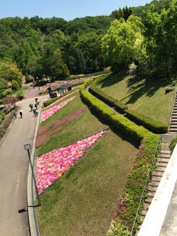 花を見に_e0201009_23083028.jpg