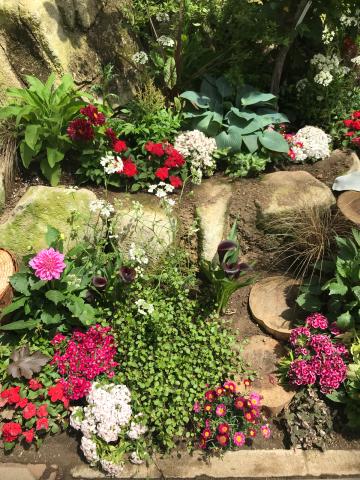 花を見に_e0201009_23110145.jpg