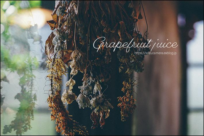 グレープフルーツジュース_f0100215_22262933.jpg