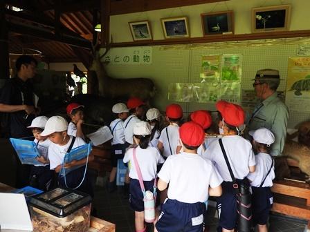 小学校の校外学習_a0123836_14424767.jpg