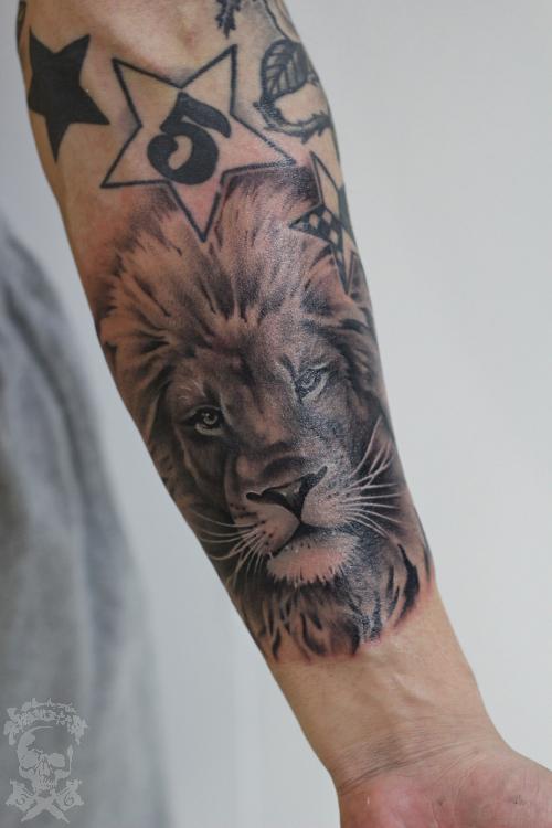 ライオン Lion_a0148054_23154368.jpg