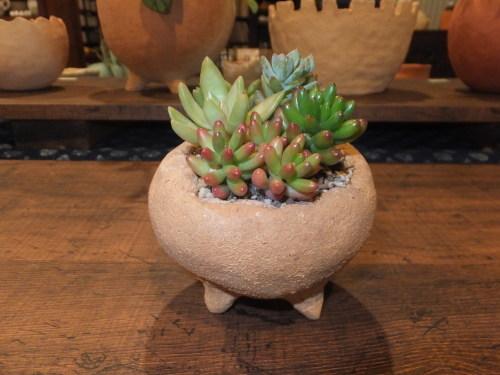 楽しい植木鉢と花器・二人展~2(記録用)_d0336460_00384748.jpg