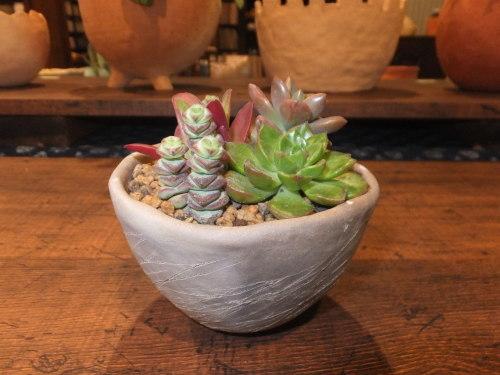 楽しい植木鉢と花器・二人展~2(記録用)_d0336460_00450912.jpg