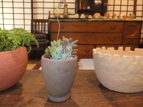 楽しい植木鉢と花器・二人展~2(記録用)_d0336460_00464610.jpg