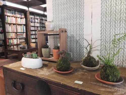 楽しい植木鉢と花器・二人展~3(記録用)_d0336460_00501486.jpg