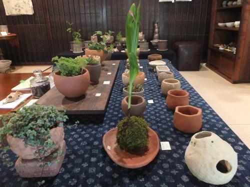 楽しい植木鉢と花器・二人展~3(記録用)_d0336460_00510235.jpg