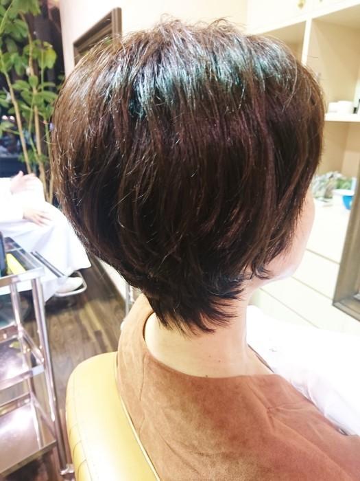 クセ毛が気になるその前に、、、_a0272765_16190905.jpg