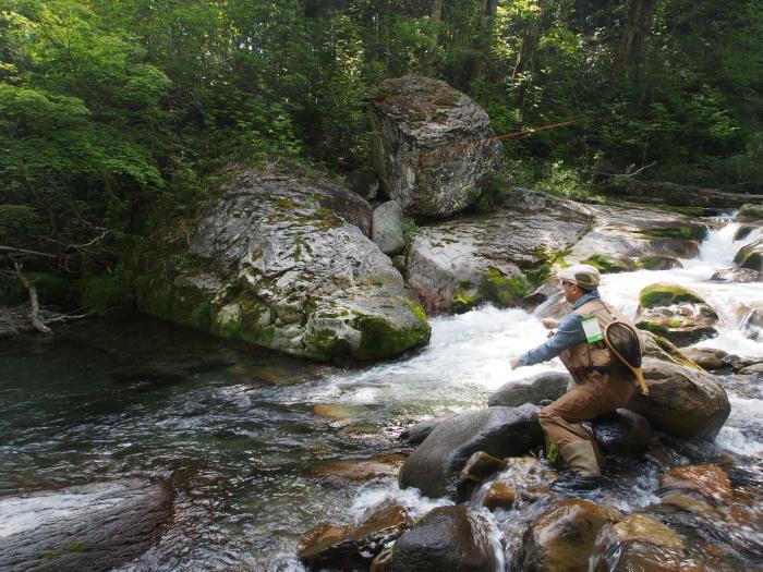 熱風吹き抜ける溪。_c0197578_23080488.jpg