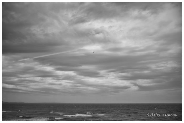曇り空の海_b0246079_18424173.jpg