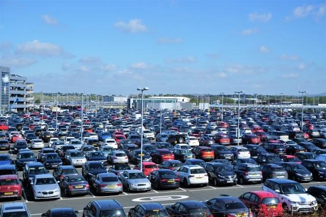 輸出車用大型駐車場でのカラス対策<現地調査>【鳥獣対策ブログ】_a0321697_16533829.jpg