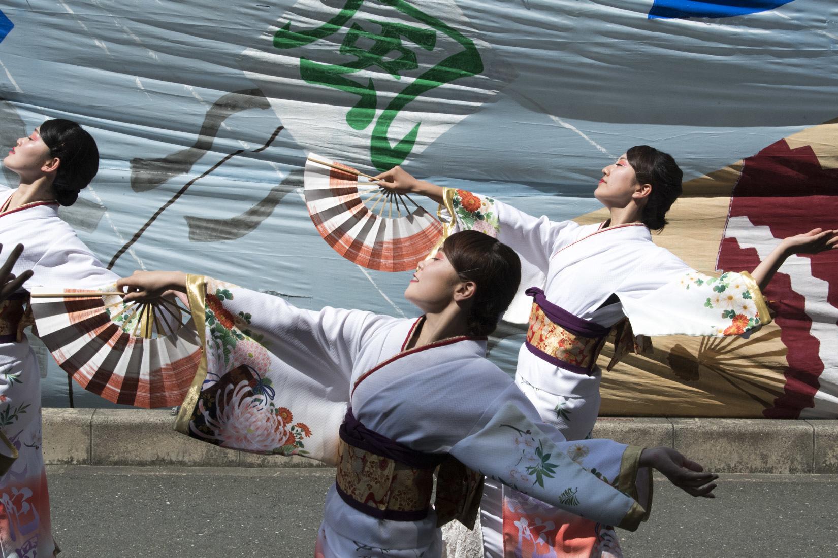 2019 よさこいin おいでん祭 『浜松学生連 鰻陀羅』_f0184198_22291460.jpg
