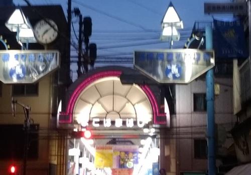 日本の夏じたく_a0236300_10243552.jpg
