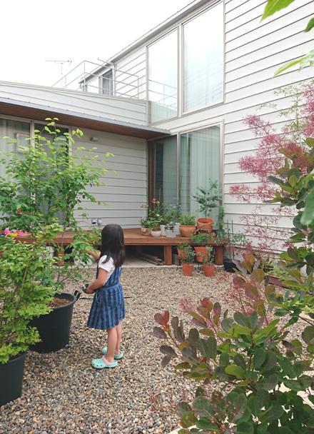 初夏の中庭、楕円の葉たち_b0183404_19260927.jpg