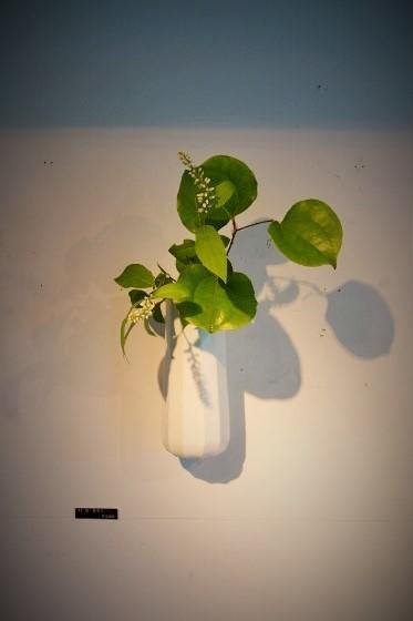 木村知子 作品展『器に咲く季節の花々…』開催中です_b0232919_19390716.jpg