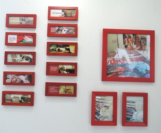 ギャラリー猫クーの写真展 5/18〜26_f0138928_08340757.jpg