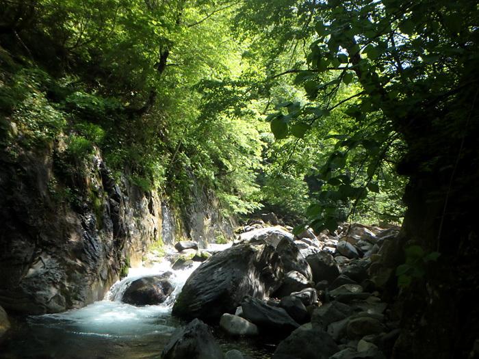 渓流の楽しみ方_c0120834_07422367.jpg