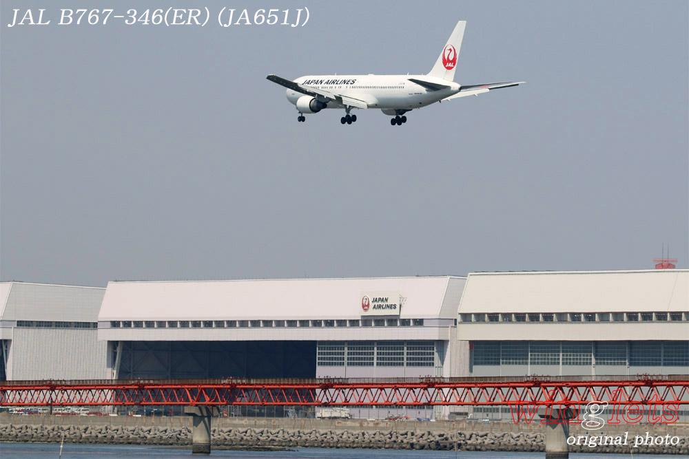 '19年 川崎・浮嶋公園レポート ・・・ JAL/JA651J_f0352866_21245011.jpg