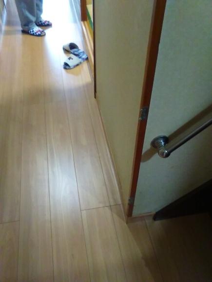 廊下の床貼り替え_d0244968_14452310.jpg