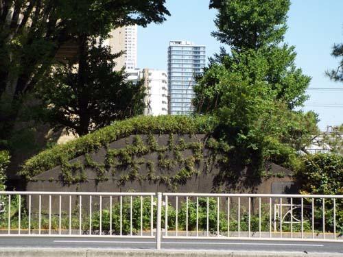 ぐるっとパスNo.6・7 三井記念美「円覚寺」と映画アーカイブまで見たこと_f0211178_16343371.jpg