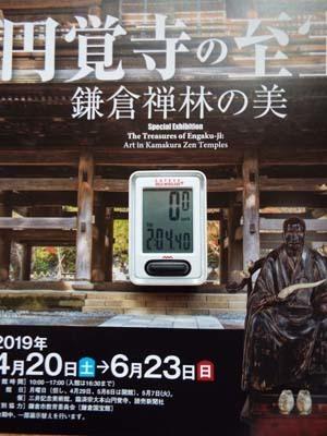 ぐるっとパスNo.6・7 三井記念美「円覚寺」と映画アーカイブまで見たこと_f0211178_16380673.jpg