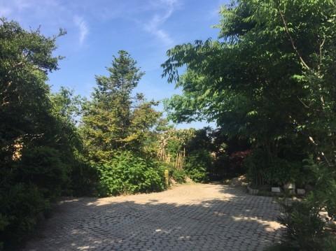 Rose Garden Fujii_e0115904_12221458.jpg