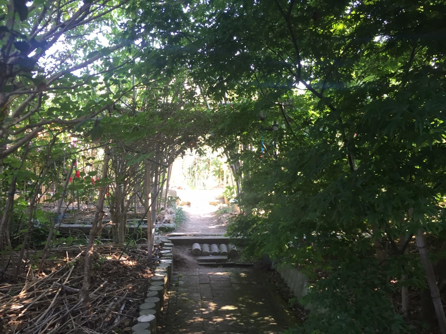 Rose Garden Fujii_e0115904_12545402.jpg