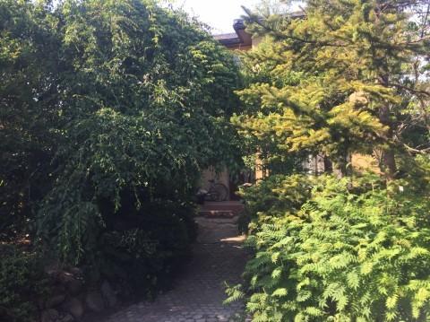 Rose Garden Fujii_e0115904_13043595.jpg