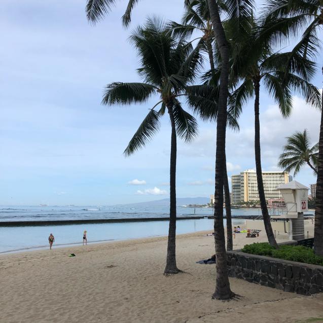 19年GWハワイ  その7☆ホテルの朝食&いやす夢の特典を発見_d0285416_23474372.jpg