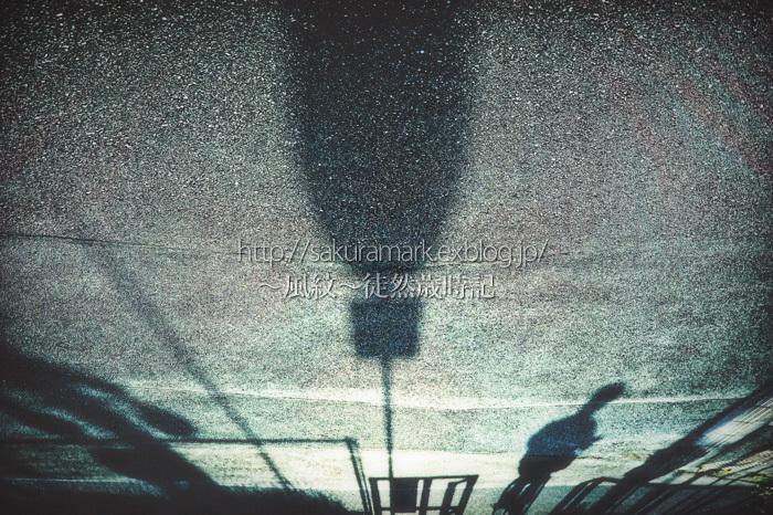 夕影の世界。_f0235723_19520414.jpg