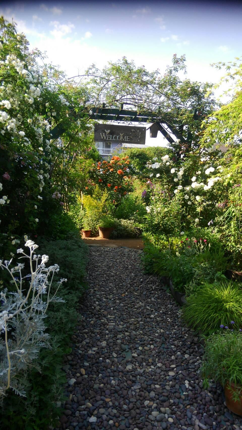 バラの庭_f0129627_15090927.jpg